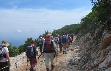 Gremo v planine